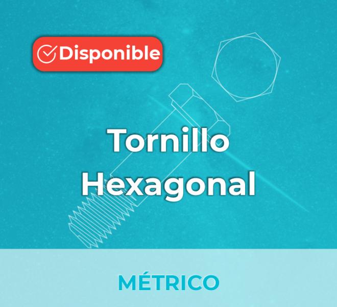 iGalga Tornillo Hexagonal métrico 2