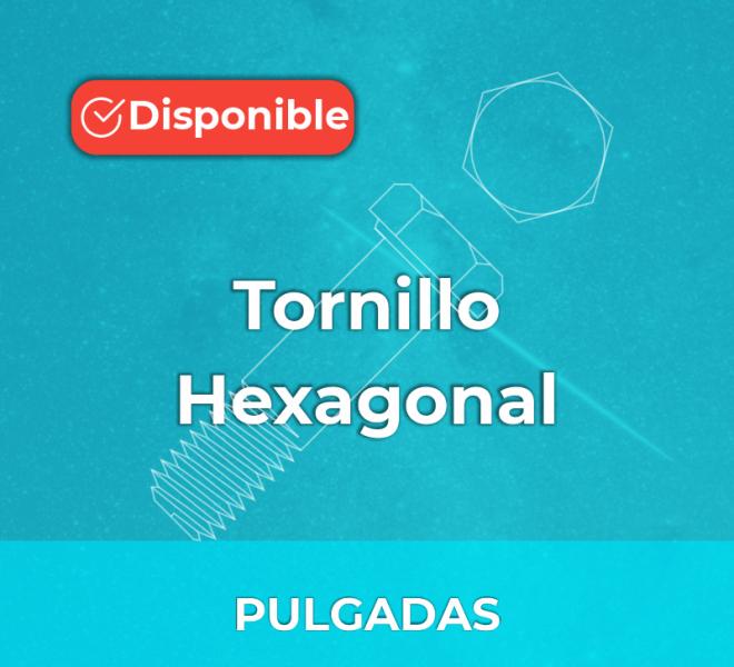 iGalga Tornillo Hexagonal pulgadas 2