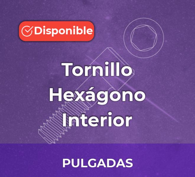 iGalga Tornillo Hexagono interior pulgadas 2